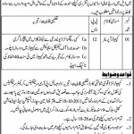 Lahore Garrison University Jobs 2011