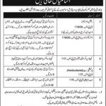 National University of Modern Language Islamabad Jobs