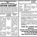 University of Veterinary Animal Sciences Lahore Jobs
