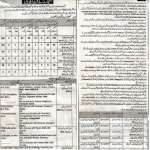 Educators Govt School Jobs in District Dera Ghazi Khan