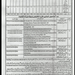 Educators Govt School Jobs in District Faisalabad