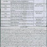 Educators Govt School Jobs in District Lodhra
