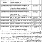 Educators Jobs Kasur Punjab 2011
