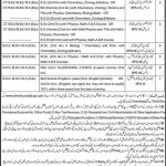 Educators Jobs Vehari Punjab 2011