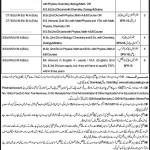 Govt School Educators Jobs in District  Rawalpindi