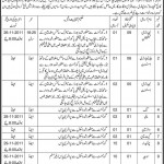 Jobs in Rawalpindi Medical College