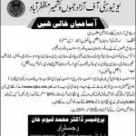 Jobs in University of Aza Jamu and Kashmir Muzafarabad