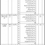 Jobs in District Officer Education Nankana Sahib