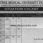 Professor Require in Khyber Medical University
