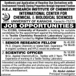 Jobs in Karachi University for Research Fellow