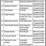 Jobs In Rangers Public Schools & College System Lahore