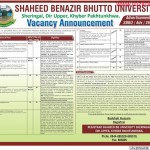 Professors, Lecturers,and  Other Job Opportunity In Shaheed Benazir Bhutto University