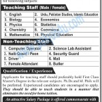 Superior Group of Colleges Rawalpindi Jobs