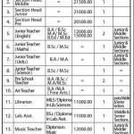 Army Public School Chhor Cantt Sindh Jobs