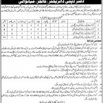 Deputy Director Colleges Mianwali Jobs