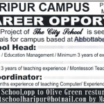 Staff Required At The Smart School Haripur