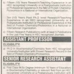 Jobs In University of Karachi 2013