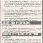Jobs In University of Karachi 2013