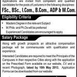 Staff Required At Punjab Group of Colleges