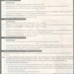 University of Peshawar Jobs 2013