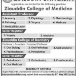 Professor Jobs in Ziauddin University Karachi