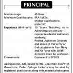 Principal Job At  Cadet College Larkana