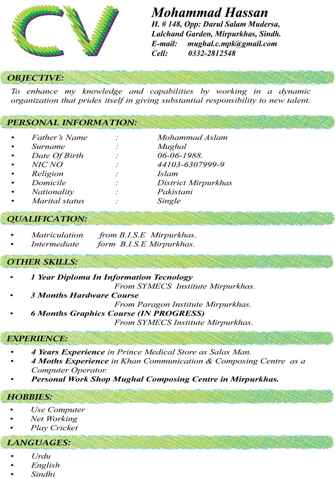 cv pattern - Cv Samples Download Pakistan
