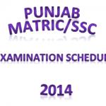 Punjab BISEs Matric/SSC Examination Schedule 2014