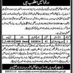 Education Department of Khyber Pakhtunkhwa Bunnir Jobs