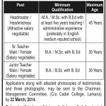 Model School And College Larkana Jobs 2014