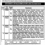 Professors Required At  In University of Baluchistan Quetta