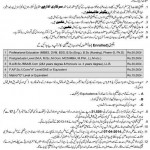 Punjab Education Scholarship/Stipend for Minority Students