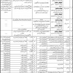 Staff Required At Mohtarma Benazir Bhutto College Karachi