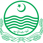 District Toba Tek Singh Educators Posts 2016 Category Wise
