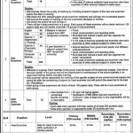 Punjab Education Foundation (PEF) Jobs 2016