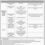 Cantonment Board Public Schools and Colleges Jobs 2017