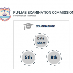 PEC Date Sheet 5th and 8th Exam 2017 – Punjab Education Commission