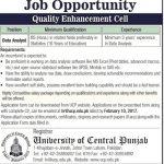 University of Central Punjab Job 2017