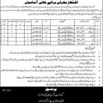 Government Degree College Boys Lahore Jobs 2017