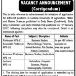 Professor Jobs At  Lasbela University Of Agriculture Water And Marine Science2017