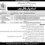 Pakistan Model Educational Institutions Foundation Vacancies 2017