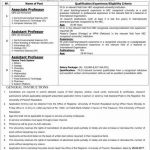 Faculty Required The University Of Poonch  2017