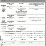 Teaching Jobs At Cantonment Board Public Schools