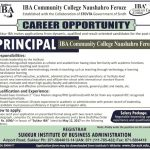 IBA Community College Naushahro Feroze Jobs 2017