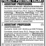 Professor Jobs At University Of Karachi 2019